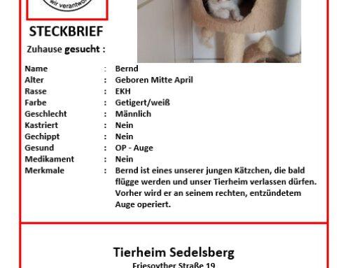 Bernd – geboren Mitte April 2020
