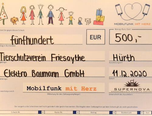 Spende der Elektro Baumann GmbH